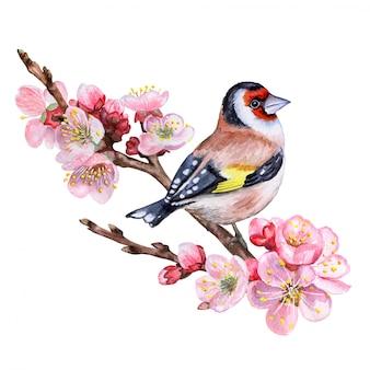 Цветущая ветка вишни с птицей
