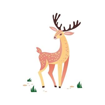 鹿の手描きイラスト。角を持つ野生動物。草の上のかわいいトナカイのキャラクター