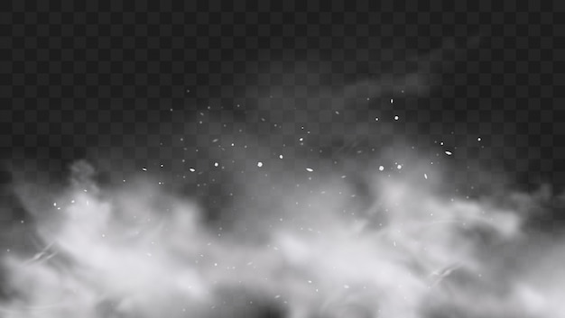 粒子と雪片のスプラッシュが透明な暗い背景に分離された白い雪の爆発。白い粉の粉の爆発、ホーリーペイントパウダー。スモッグまたはフォグ効果。リアルなイラスト