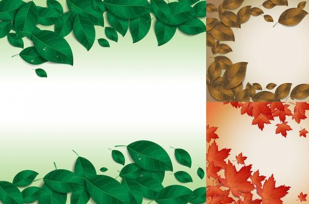 葉のバックグランド