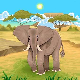 象のベクトル図とアフリカの風景