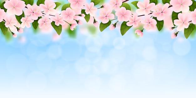 春の背景。