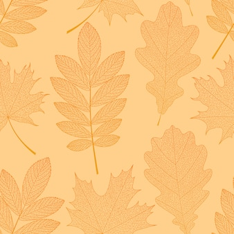 オレンジの葉と秋の背景