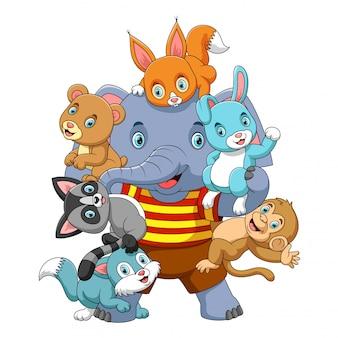 大きな強い象と遊ぶ多くの動物