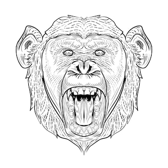 チンパンジーの頭の描画彫刻