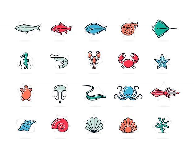 魚と海の食品のセット色付きの線アイコン。エビ、カキ、イカ、カニなど。