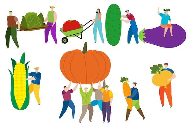 Крошечный человек и женщины в рабочей одежде собирают продукты природы в естественной иллюстрации еды изолированной на белизне.
