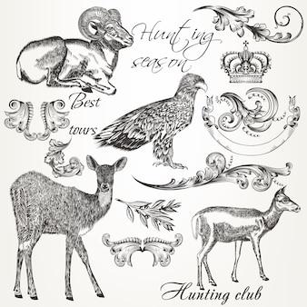 Коллекция иллюстрированных животных и орнаментов