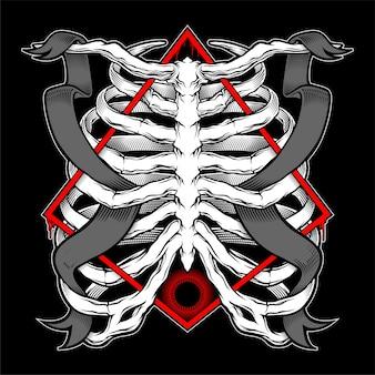 人間の胸郭のイラスト。ベクトルイラスト