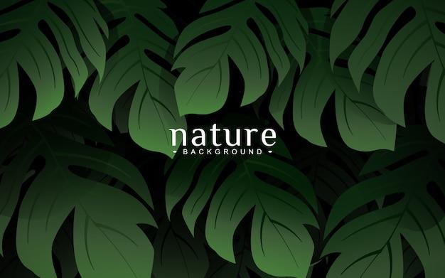モンステラヤシの葉、自然の背景