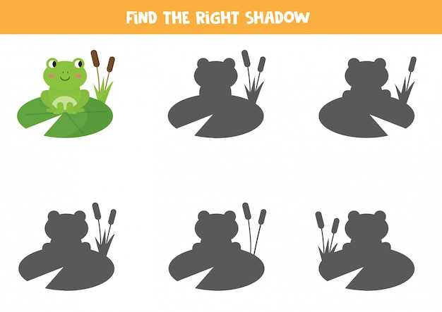 Найдите правильную тень милой мультяшной лягушки. развивающая игра для детей
