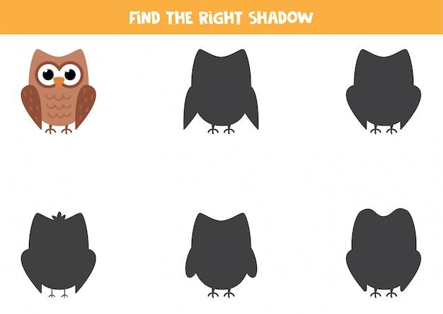 かわいい漫画のフクロウの正しい影を見つけてください。子供のためのワークシート。