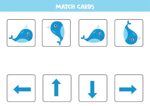 シロナガスクジラの向きとカードを一致させます。