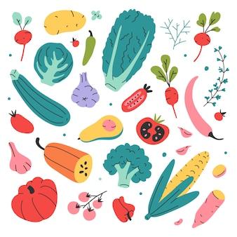 さまざまな種類の野菜、手描きのベクトルイラスト