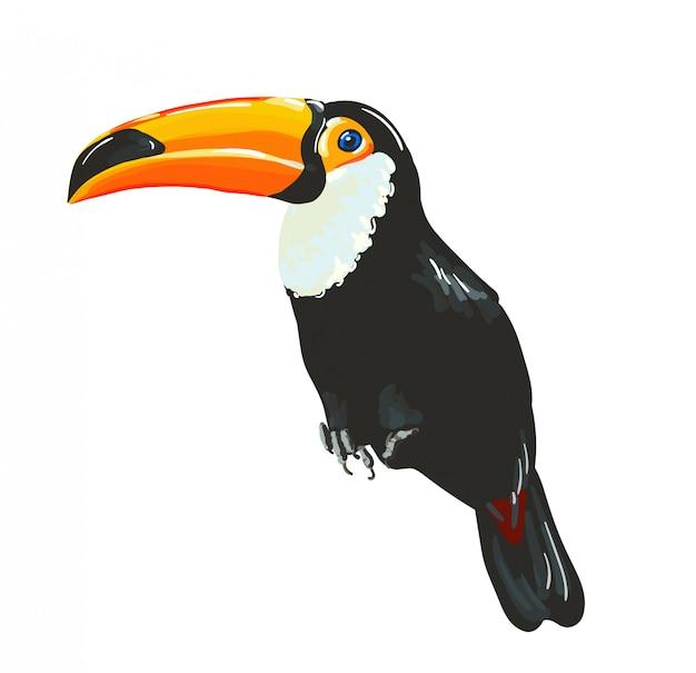 Птица тукан. вектор