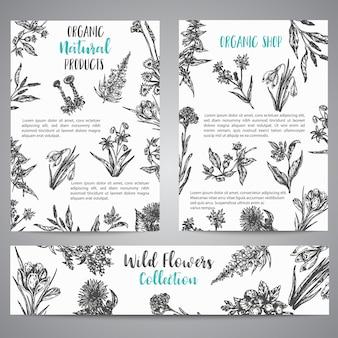手描きのハーブや野生の花のパンフレットスケッチスタイルの植物イラストのビンテージコレクション