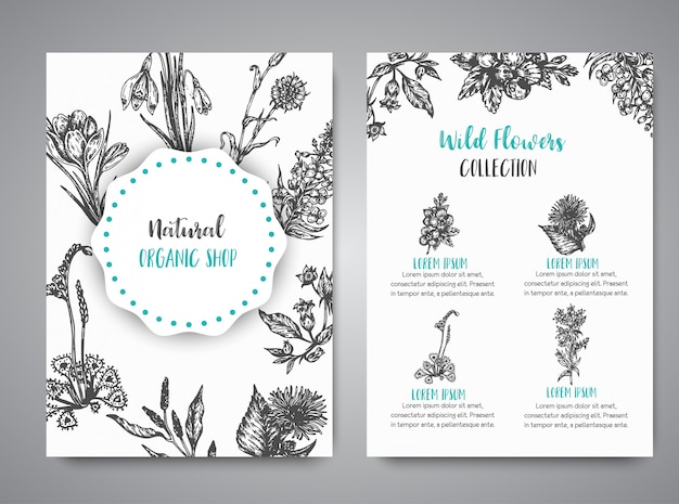 手描きのハーブや野生の花カード植物のヴィンテージ・コレクション