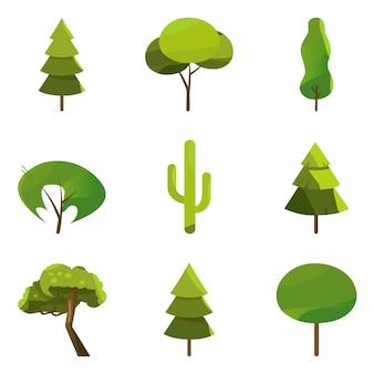 Коллекция иллюстраций деревьев. сосна и дуб, вечнозеленые.