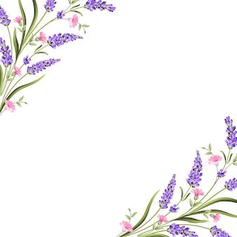 ラベンダーの花を持つエレガントなカード。