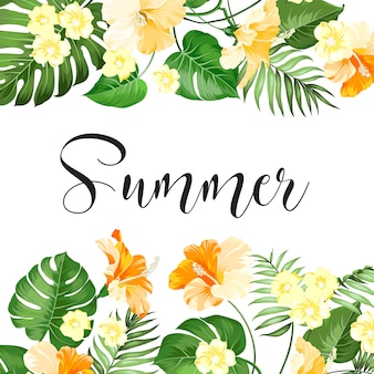 夏のセールカード。