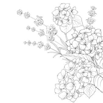 ラベンダーと分離されたアジサイの花の花輪