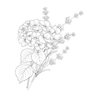 白で分離されたラベンダーとアジサイの花のデザイン。