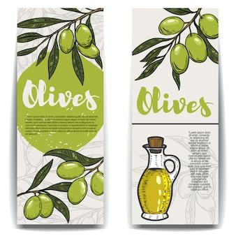 Набор листовки оливкового масла. ветка оливы. элементы для флаера, плаката. иллюстрация