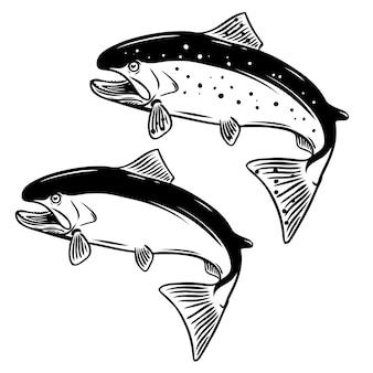 白い背景の上のサケ魚のイラスト。ロゴ、ラベル、エンブレム、記号の要素。図