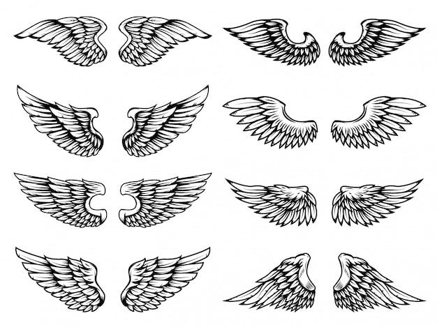 白い背景の上の翼。ロゴ、ラベル、エンブレム、記号、バッジの要素。図