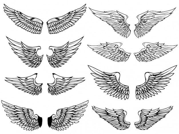白い背景の上のヴィンテージの翼のイラストのセットです。ロゴ、ラベル、エンブレム、記号の要素。図。