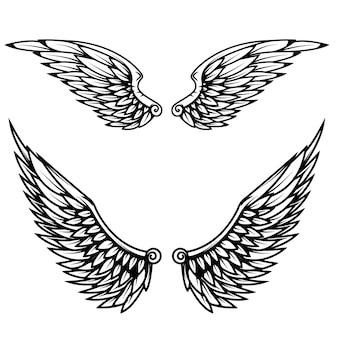 Старинные крылья на белом фоне.