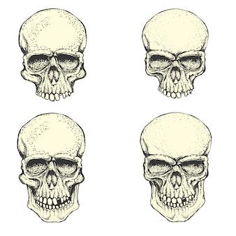 Набор рисованной человеческих черепов. элементы дизайна для печати эмблемы, плаката, футболки или одежды.