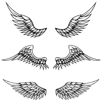 Набор старинных крыльев на белом фоне. элементы для логотипа, этикетки, эмблемы, знака, торговой марки.