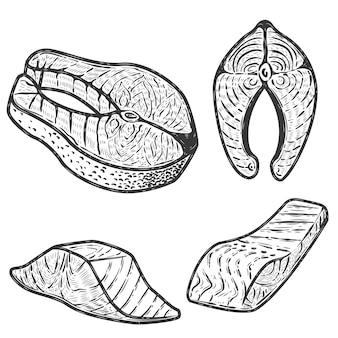白い背景の上のサーモン肉のセット。メニュー、ラベル、エンブレム、看板、ポスターの要素。図。