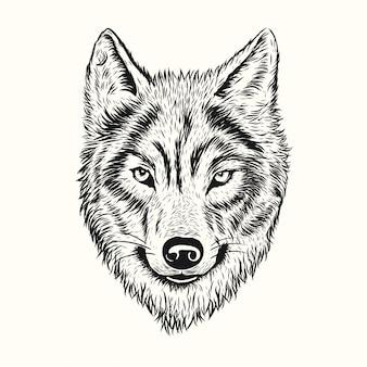 オオカミの手描き