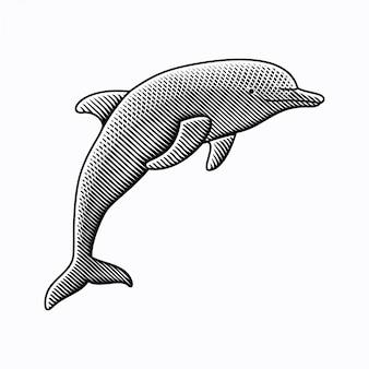Гравюра рисованной стиль иллюстрации дельфинов