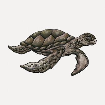 Нарисованная рукой иллюстрация морской черепахи