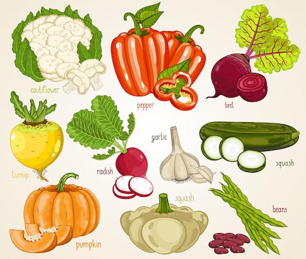 野菜を混ぜます。有機食品、農場。