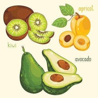 Свежая фруктовая смесь, векторная иллюстрация