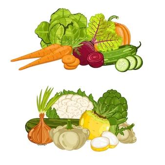 Свежий органический овощной набор