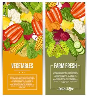有機野菜農業チラシセット