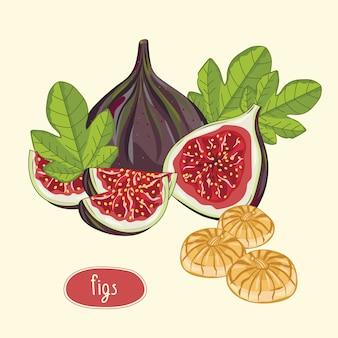 Плоды инжира, изолированные на бежевом