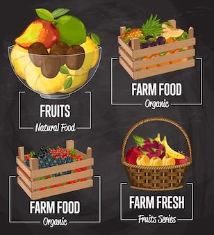 Органическая ферма фруктовый набор концепций