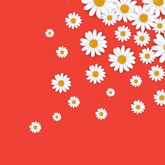 咲くカモミールと春の背景