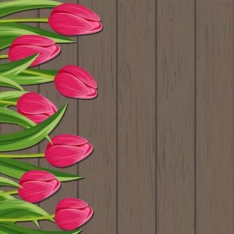 ピンクの咲くチューリップ背景と春