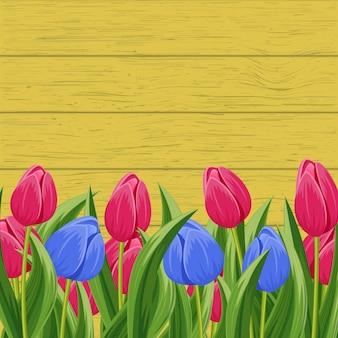 Весенний фон с цветущим тюльпаном
