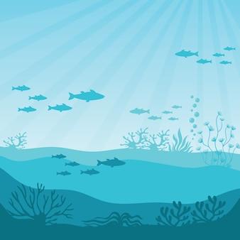 海底のサンゴ礁。海底パノラマ