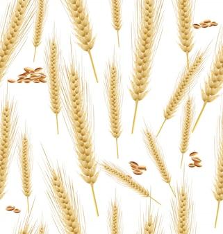 小麦の背景のシームレス