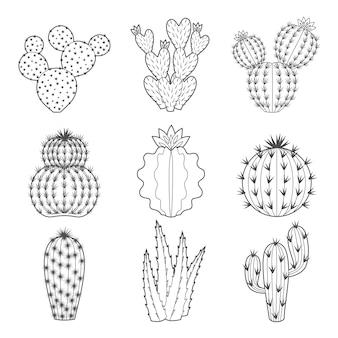 Набор иконок контурных кактусов и суккулентов