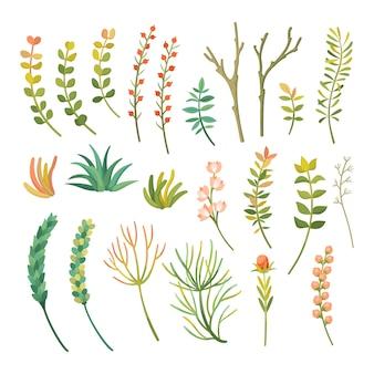 Мультяшный разных видов растений установлен